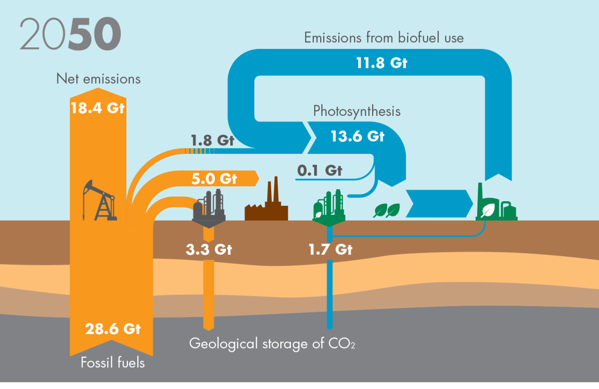 By 2050, the scene is very different. CCS has emerged at scale, both  directly in fossil fuel applications such as industrial facilities using  natural gas in ... 56d6478e2b